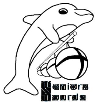 Logo seniros