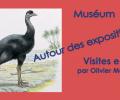 Muséum Grenoble – de avril à juin 2016 – visite LSF